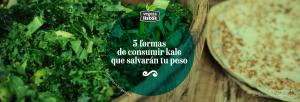 5 formas de consumir Kale