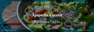 Apapacha a mamá