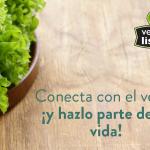 Conecta con el verde  ¡y hazlo parte de tu vida!