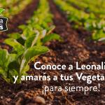 Conoce más de Leonali y amarás tus Vegetalistos para siempre