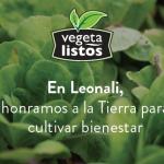 En Leonali, honramos la Tierra para cultivar bienestar